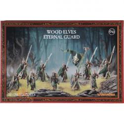 Age of Sigmar : Order - Eternal Guard / Wildwood Rangers