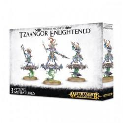 Age of Sigmar : Chaos - Tzeentch Arcanites Tzaangors Enlightened