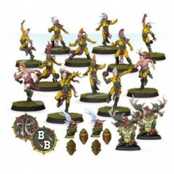 Blood Bowl : Elf Team - Athelorn Avengers